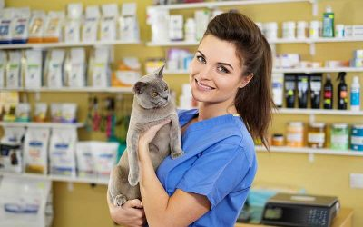 otimizar o tempo no pet shop